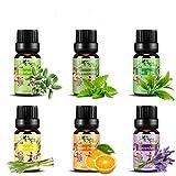 Set de aceites esenciales,100% Natural Puro Aromaterapia Aceite Aromático,6 x 10 ml (Lavanda,...
